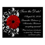 Red+Black+White Gerbera Daisy Save the Date Post Card