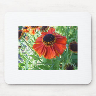 red blanket flower mouse pad