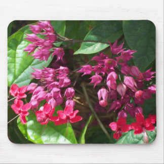 Red Bleeding Heart Flowered Mousepad Mousepads
