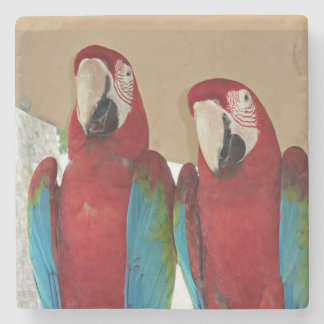 Red Blue Green Macaws Stone Coaster