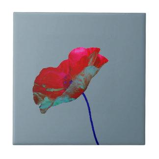 Red blue poppy on grey tile