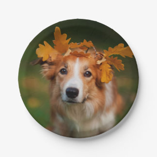 Red Border Collie With a Garland of Autumn Leaves 7 Inch Paper Plate