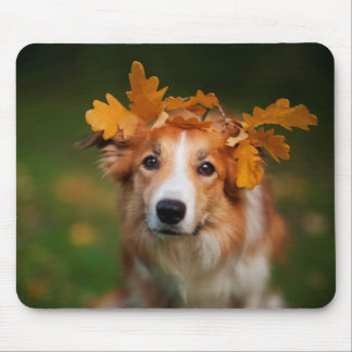 Red Border Collie With a Garland of Autumn Leaves Mouse Mat