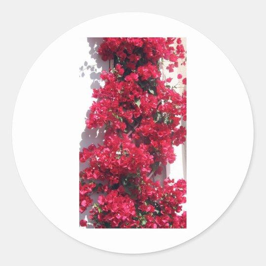 Red Bougainvillea Classic Round Sticker
