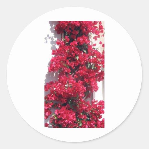 Red Bougainvillea Sticker