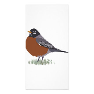 Red Breasted American Robin Digitally Drawn Bird Personalized Photo Card