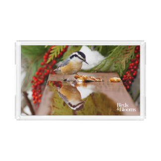 Red-breasted Nuthatch Acrylic Tray