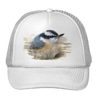 Red-breasted Nuthatch Hats