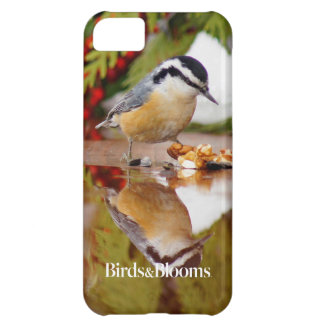 Red-breasted Nuthatch iPhone 5C Case