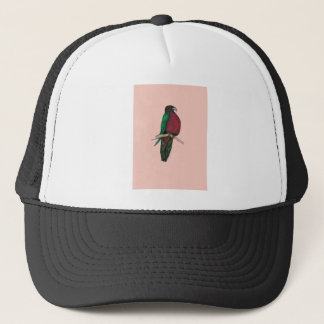 red breasted parrot, tony fernandes trucker hat