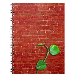 Red brick wall spiral notebook