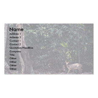 Red brocket deer (Mazama americana) Double-Sided Standard Business Cards (Pack Of 100)