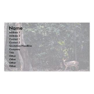 Red brocket deer Mazama americana Business Card Templates