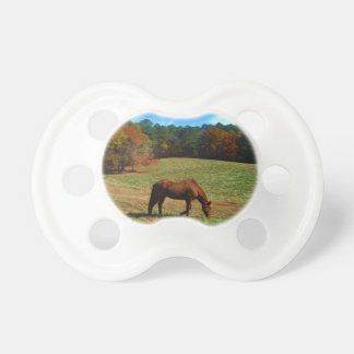 Red Brown horse fall trees blue skies Pacifiers