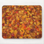 Red Brown Orange and Yellow Autumn Leaves Mousepad