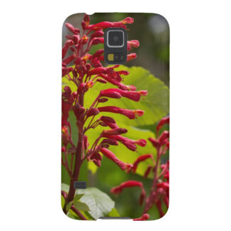 Red Buckeye Wildflowers - Aesculus pavia Cases For Galaxy S5