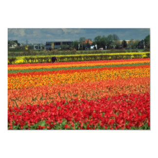Red Bulb growing, Lisse, Holland flowers 13 Cm X 18 Cm Invitation Card