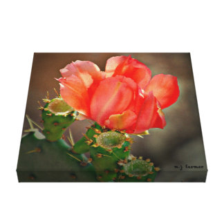 Red Cactus Bloom Wrapped Canvas