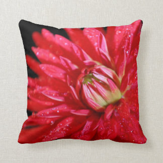 Red Cactus Dahlia Cushion