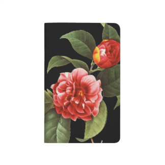 Red Camellia, 1833 Journal