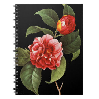 Red Camellia, 1833 Spiral Notebooks