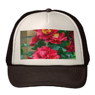 Red Camellia Hat