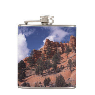 Red Canyon Hip Flask