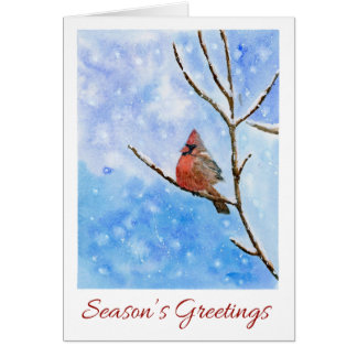Red Cardinal Bird on a Snowy Branch|Christmas Card