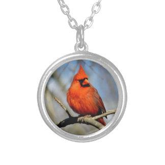 Red Cardinal Crest Locket