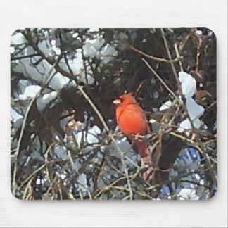 Red Cardinal in Snow Laden Trees Photo Art Mouse Pad
