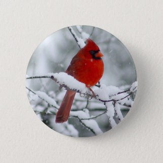 Red Cardinal in the Snow Button