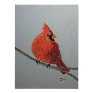 Red Cardinal on Branch in Pastels Poster