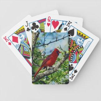 Red Cardinal Wild Bird Poker Deck