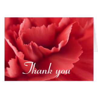 Red carnation flower ... Thank you card