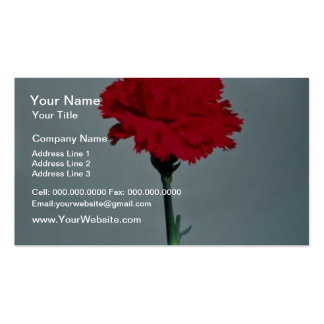 Red carnation flowers business card template