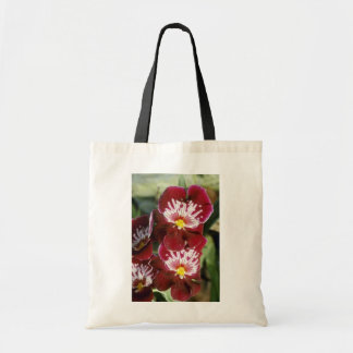 Red Celle 'Wasserfall' (Miltonia) flowers Tote Bags