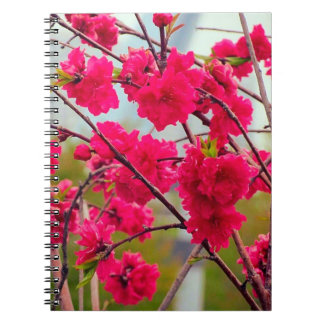Red cherry blossom notebook