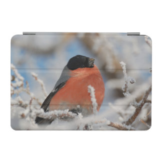 Red Chested Bird in Frosted Tree iPad Mini Cover