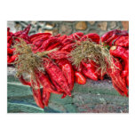 Red Chiles Postcard