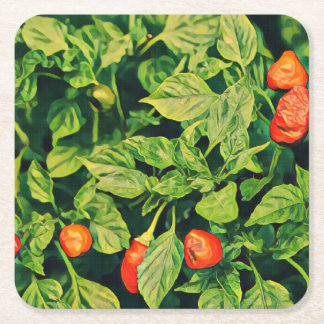 Red Chili Peppers Square Paper Coaster