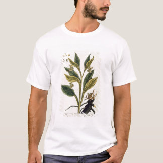 Red Chilli (colour engraving) T-Shirt