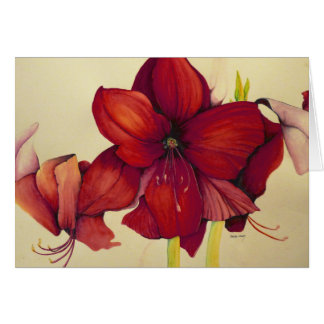 Red Christmas Amaryllis Painting Greeting Card