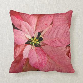 Red christmas poinsettia flowers cushion