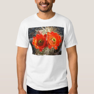Red Claret Cup Cactus Blossoms Shirt