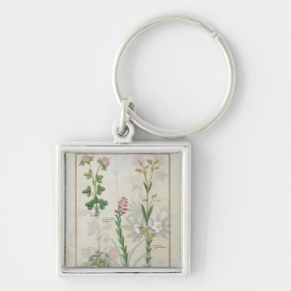 Red clover & Aube Bellidis Onobrychis & Hyssopus Key Ring