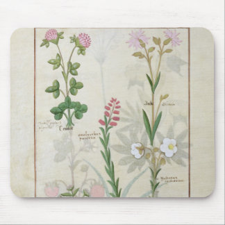Red clover & Aube Bellidis Onobrychis & Hyssopus Mouse Mat