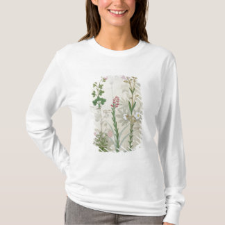 Red clover & Aube Bellidis Onobrychis & Hyssopus T-Shirt