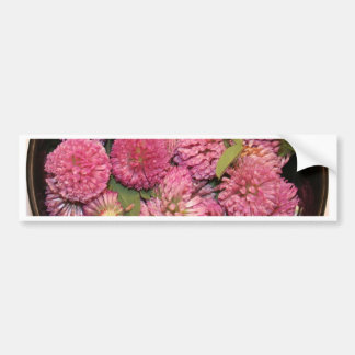 Red Clover Blossoms Bumper Sticker