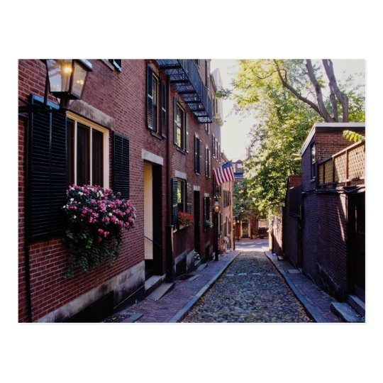 Red Cobblestone Acorn Street flowers Postcard