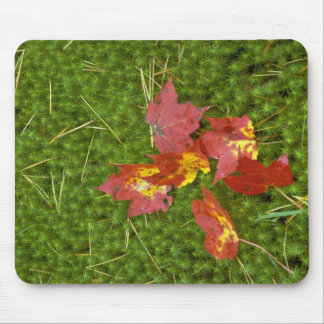 Red colored maple leaves fallen on carpet of moss mouse pad